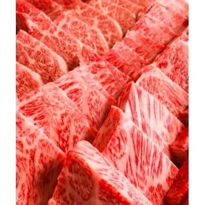 鳥取和牛焼肉おまかせセット