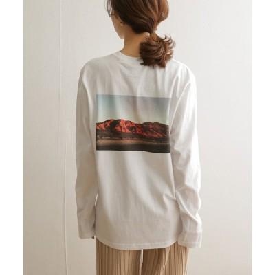 tシャツ Tシャツ STAR&STRIPE ロングスリーブTシャツ(mountain)