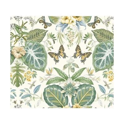 (新品) York Wallcoverings ON1601 ON160-1 Tropical Butterflies 60 3/4 Sq. Ft. Botanical Pre-Pas