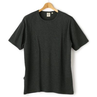 SizeMax AVIREX 半袖クルーネックTシャツ