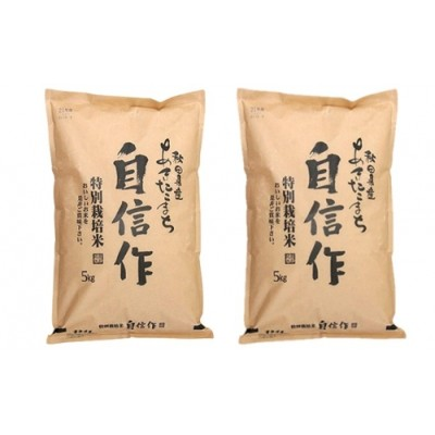 【 特別栽培米 】あきたこまち 5kg×2袋 精米 令和 2年産『 自信作 』(合計10kg)< 秋田やまもと 農業協同組合>