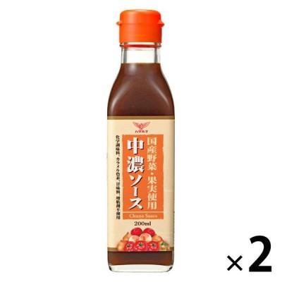 ハグルマ 国産野菜・果実使用 中濃ソース 200ml 2本