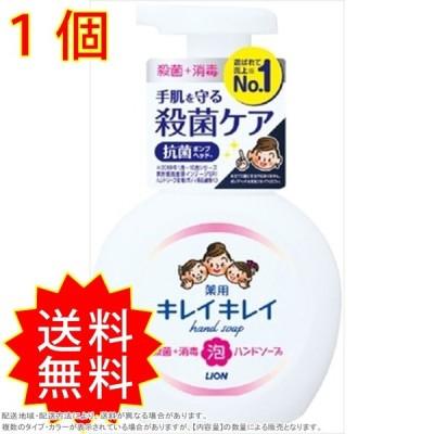 キレイキレイ 薬用泡ハンドソープ ポンプ250ml ライオン ハンドソープ 通常送料無料