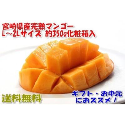 宮崎マンゴー 贈答向け 2Lサイズ 約350g化粧箱入 宮崎  ギフト マンゴー 宮崎県 完熟 完熟マンゴー S10