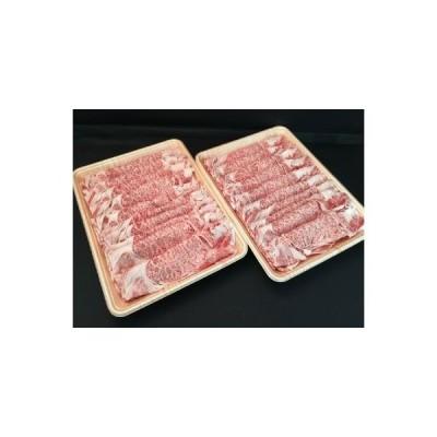 ふるさと納税 【おうちBBQ】 20028 飛騨牛すき焼き用(肩ロース肉)250g×2パック 岐阜県中津川市