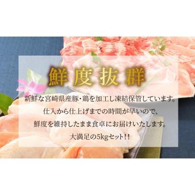 K16_0015_1 <宮崎県産豚・鶏5kgセット>