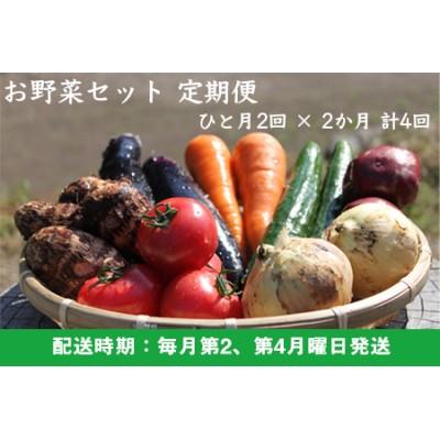 K333-24 UIC 【月2回定期便】名水うきはの無農薬減農薬お野菜セット (ひと月2回×2か月=計4回)
