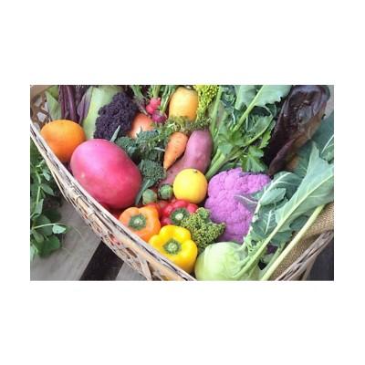 <MI FOODSTYLE(野菜・フルーツ)/エムアイフードスタイル(野菜・フルーツ)> 野菜ボックス【三越伊勢丹/公式】