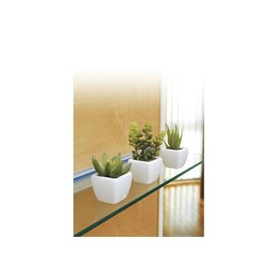 【ポイント10倍】《アートグリーン》《人工観葉植物》光触媒 光の楽園 多肉植物3点セット
