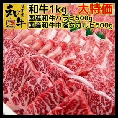 牛肉 肉 焼き肉 国産 和牛 1kg 焼肉セット (和牛ハラミ 500g 中落ち カルビ 500g)送料別
