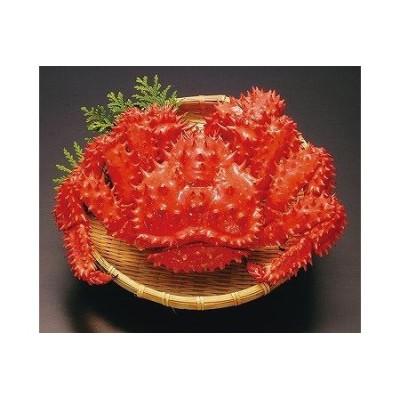 【北海道根室産】ボイル花咲蟹400g×5尾 B-66005