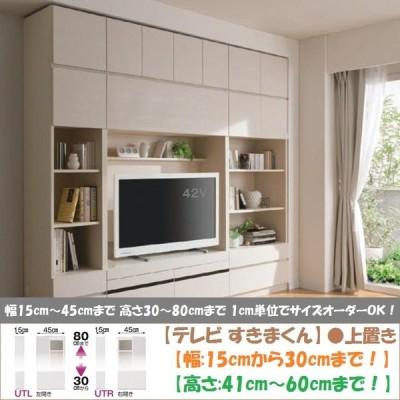 すきまくん テレビ 上置き 壁面家具 完成品 高さ41cm-60cm 幅15cm-30cm 上棚収納 板戸 開き扉 LSK-UTR UTL