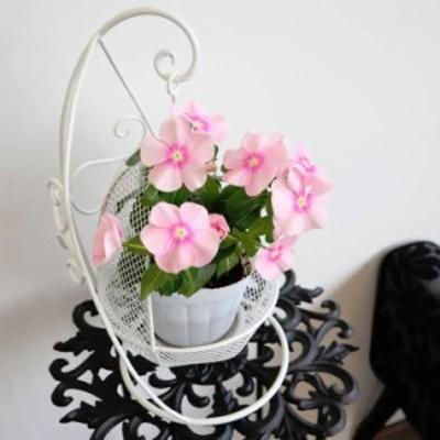 ハンギングプランターS ホワイト 鉢カバー