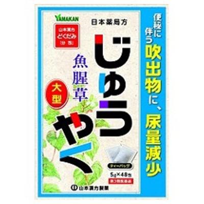 【第3類医薬品】【山本漢方製薬】日本薬局方 じゅうやく 大型 5G×48包 ※お取り寄せの場合あり