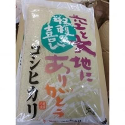 【令和2年産米】榛東村産コシヒカリ 10kg(5kg×2袋)