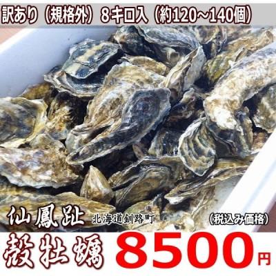 牡蠣/最大140個 8キロ(訳あり ハネモノ)厚岸西岸 仙鳳趾 生牡蠣(かき)(殻付き 生食)/牡蛎/
