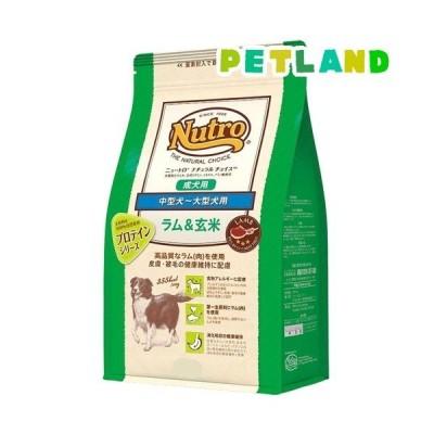ニュートロ ナチュラル チョイス ラム&玄米 中型犬~大型犬用 成犬用 ( 4kg )/ ナチュラルチョイス(NATURAL CHOICE) ( ドッグフード )