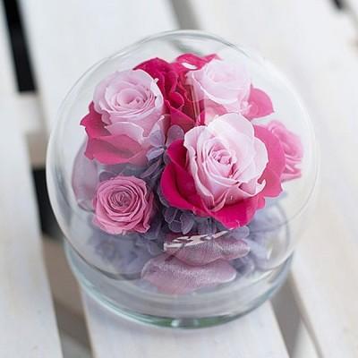 プリザーブドフラワー / シュシュガラスドーム ( ピンク )   花 お祝い 記念日 ギフト 造花