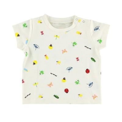 tシャツ Tシャツ ランダム12昆虫大集合Tシャツ