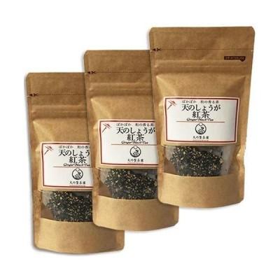 みなまた和紅茶 天のしょうが紅茶TB ティーバッグ (2.5g 10個)x3袋セット 天の製茶園 国産紅茶
