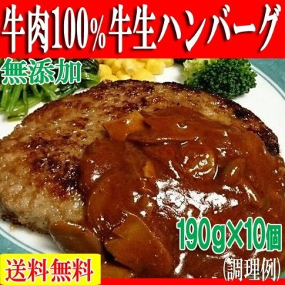 父の日 プレゼント プレミアム ハンバーグ 牛肉 お肉 肉 焼き肉 bbq バーベキュー  牛肉100% 牛生 190g×10個 冷凍A