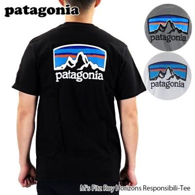 patagonia パタゴニア Horizons Responsibili-Tee 38501