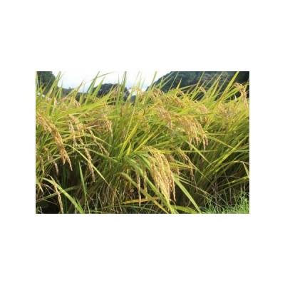 ふるさと納税 空海ゆかりの里 うまにのおいしいお米(玄米)[0998] 高知県黒潮町