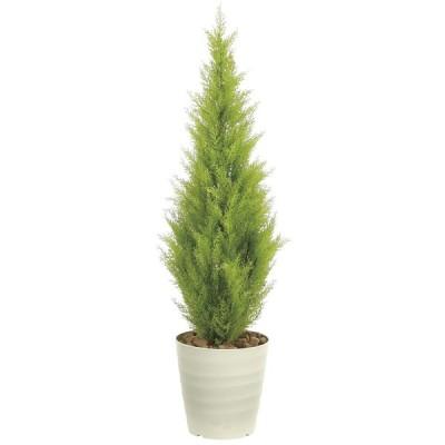 造花 観葉植物 「ゴールドクレスト 130cm」 ポリ製 インテリア グリーン 68