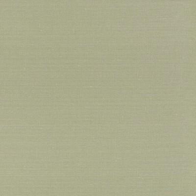 切売 壁紙 輸入壁紙 rasch2020 401851 (Lazy Sunday2) フェミニン 無地 緑 グリーン