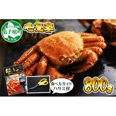 339.北海道産 ボイル毛蟹姿 800g 食べ方ガイド・専用ハサミ付 カニ かに 蟹 海鮮 北海道
