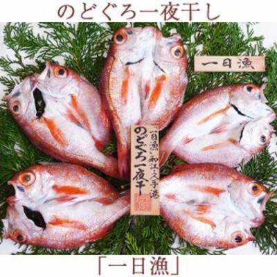 のどぐろ一夜干「一日漁」小 70~100g(5~6枚)