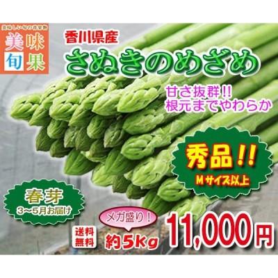 アスパラガス さぬきのめざめ春芽 約5kg 香川県産