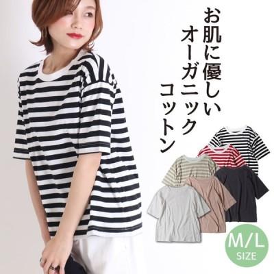 tシャツ 半袖 レディース 大きいサイズ 白 無地 ボーダー 綿 インナー トップス