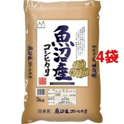 令和2年産 魚沼産コシヒカリ たわら (5kg*4袋セット(20kg))