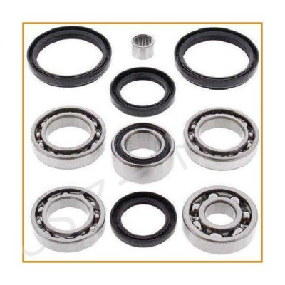 BossBearing Rear Differential Bearings Seals Kit for Arctic Cat 650 H1 4x4 2005 2006 2007 2008