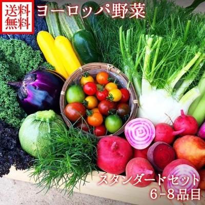 ヨーロッパ野菜 詰め合わせ スタンダード セット 6-8品目 珍しい 野菜 詰め合わせ set ヨーロッパ サラダ 野菜 プレゼント お取り寄せ グルメ ギフト 送料無料