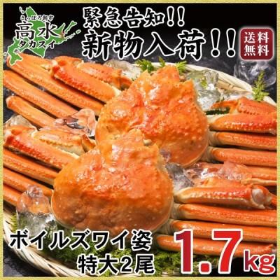 ズワイガニ 特大 2尾 カニ 蟹 かに ずわいがに 姿 2尾 計1.7kg ボイル ズワイ蟹 送料無料 1尾850g  お中元 敬老の日 お歳暮年末年始 ギフト  内祝