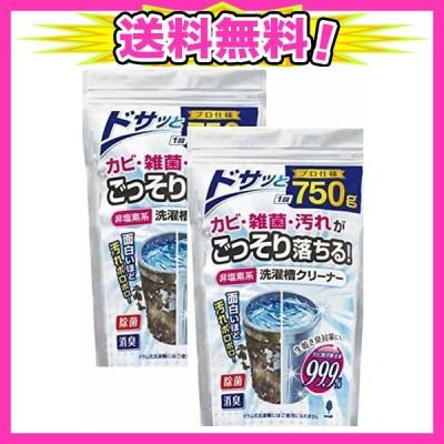 紀陽除虫菊 洗濯槽クリーナー (非塩素系/750g×2個セット) 粉末タイプ (洗濯機掃除/生乾き臭防止に)除菌 消臭 生乾き臭防止 ほこり カビ取り