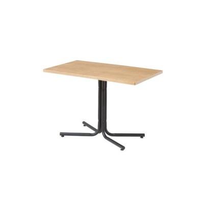 カフェテーブル [ダリオ] W100×D60×H67 END-224TNA
