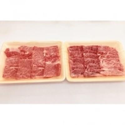関門和牛 焼肉セット(肩ロース肉・赤身肉 計1kg) ST44-S30