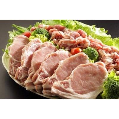 みかわもち豚ロース テキカツ用・ウデモモ切り落とし盛り合わせ(計2.1kg)【1200027】