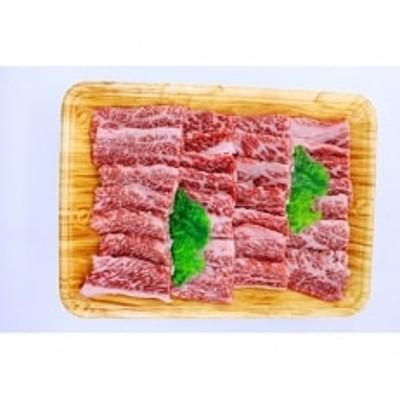 【A5ランク】博多和牛焼肉用(バラ)500g