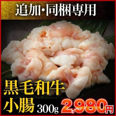 宮崎県産黒毛和牛 小腸 300g コプチャン ホルモン 単品 同梱専用