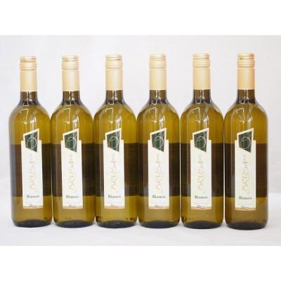 イタリア白ワイン チェヴィコ ブルーサ ビアンコ 750ml×6