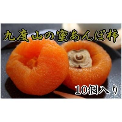 あんぽ柿「蜜あんぽ」大きめサイズ10袋入り