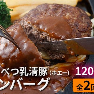 肉のあさひ 大人気!【のぼりべつ乳清豚(ホエー)】ハンバーグ120g×5個[全2回お届け]