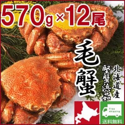 毛ガニ 毛蟹 カニ 蟹 姿  特大 北海道産 ボイル 毛がに 毛蟹 570g×12尾 かに けがに ギフト プレゼント 送料無料 お買い得 かにみそ