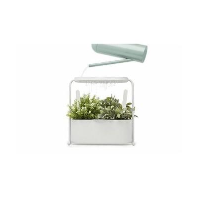 umbra 植木鉢 横長 楕円 プランター ガーデンセット インテリア ホワイト GIARDINO 21009612660