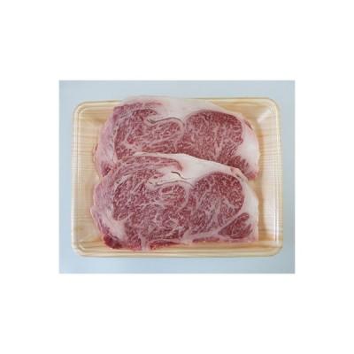 本巣市 ふるさと納税 【A5等級】飛騨牛サーロインステーキ用600g(300g×2枚)