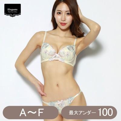 脇高大花刺繍ブラ&ショーツセット(エレガンテ/Elegante)